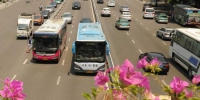 绿色公交服务市民出行。 - 新浪