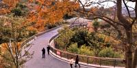 罗源凤梅生态公园春节前开园 步道伸巨臂拉起凤山和梅岭 - 福州新闻网