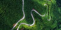农村公路在竹海蜿蜒盘旋。肖维明摄 - 福建新闻
