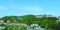 绿树掩映下的湄洲妈祖祖庙 - 新浪