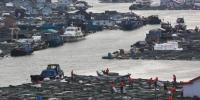 泉港碳九泄漏事件官方最新通报 4名企业人员被调查 - 新浪