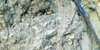 在土壁上,有石器堆积层。 - 新浪