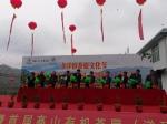 南靖县举行茶旅文化节 今年茶旅游客预计达5万人 - 新浪