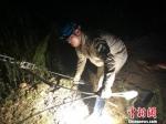 6月10日晚,沙县供电公司公司员工冒雨加固线路拉线。三明电力供图 - 福建新闻