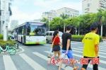 厦门公交效率全国第一 全市公交斑马线礼让率99.01% - 新浪